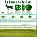 ferme-ty-coat-bordeaux-33