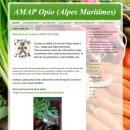 amap-opio-06