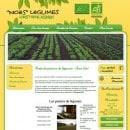 noes-legumes-ferme-sace-53
