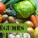 yakademander-legumes