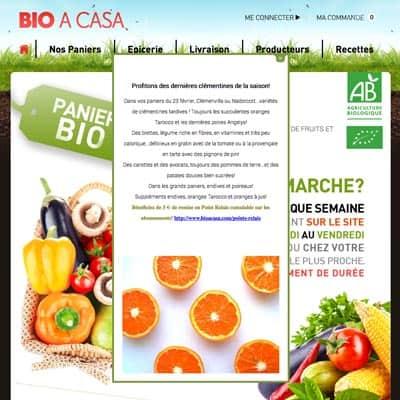 bioacasa livraison de paniers de fruits et l gumes bio paris. Black Bedroom Furniture Sets. Home Design Ideas