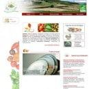 biomas-panier-bio-finistere-29