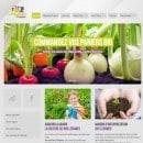 legumes-project-paniers-bio-en-bretagne