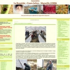 amap-marseille-roustide