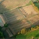 bio-legumes-agriculteur-44
