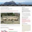 les-paniers-du-roy-d-espagne-calanques-marseille