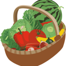 Ma Récolte Bio - Paniers Bio