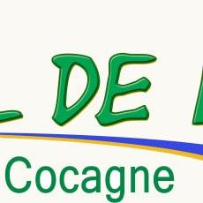 LOGO AFE web