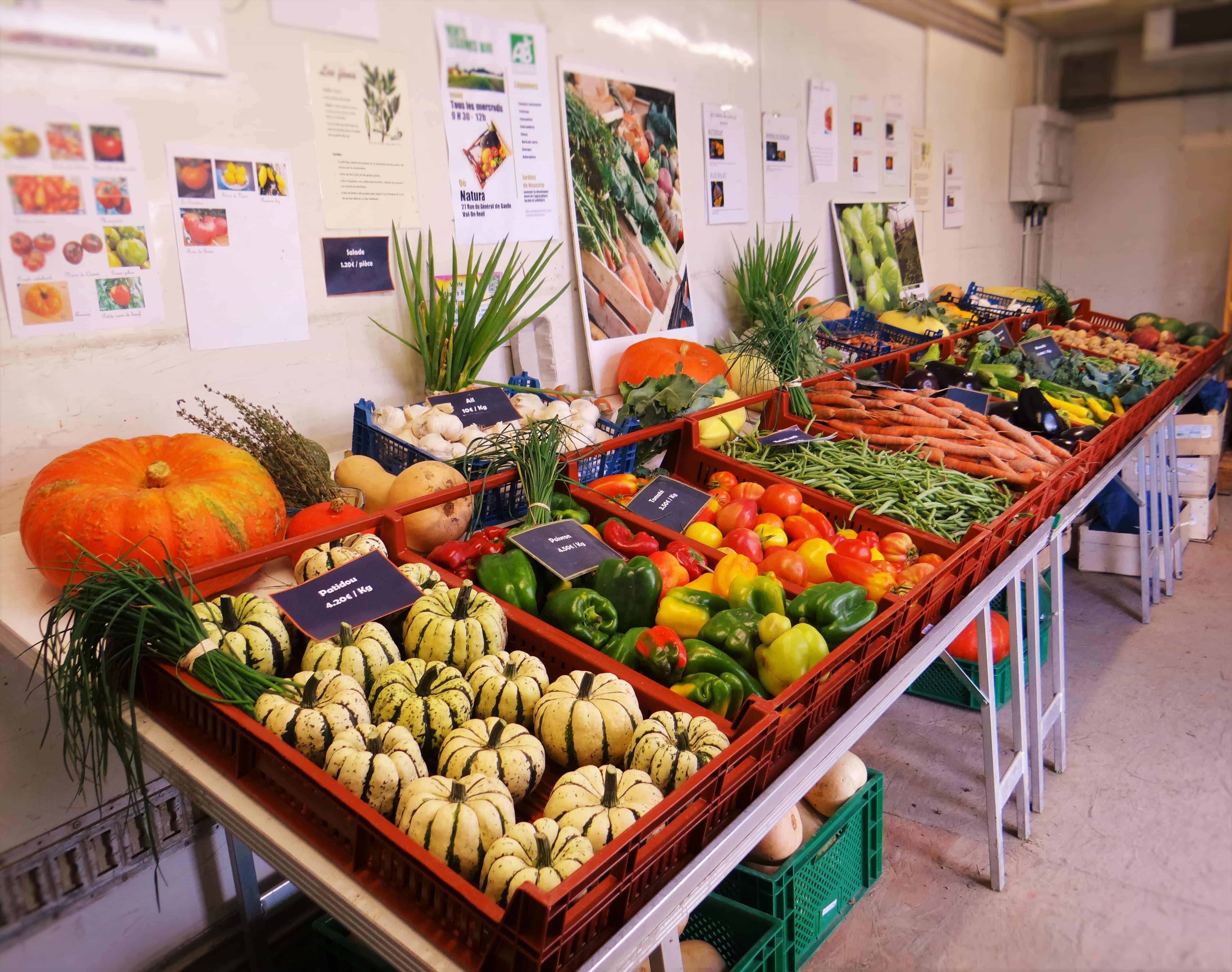 Legumes A Mettre Dans Le Jardin les jardins de neustrie : panier de fruits et légumes dans l
