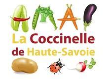 amap_la-coccinelle-de-haute-savoie_06_215